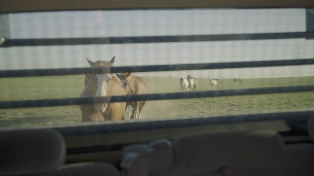 2020-09-14_Texas Boys Ranch - Lubbock Equine Therapy - Screenshot 02